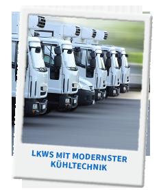 LKWs mit modernster Kühltechnik: Jetzt Ausbildung beginnen!