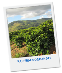 Ausbildungsangebote im Kaffee-Großhandel