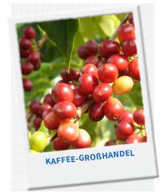 Wir haben viele Ausbildungsplätze im Bereich Kaffee-Großhandel für Dich!